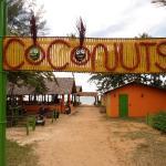 ภาพถ่ายของ Coconuts Nang Thong Beach