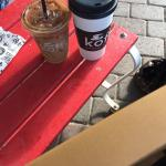 Foto di Palm Springs Koffi