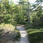 The Ridges Sanctuary Foto