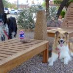 Days Inn Camp Verde Arizona Foto