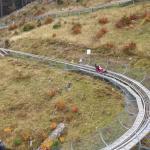 Hasenhorn Coaster Todtnau Foto
