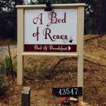Photo de A Bed of Roses B&B