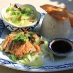 Khao Na Ped (Roast Duck on Rice)