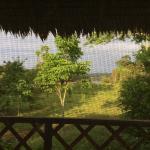 Foto de Sotupa Eco House