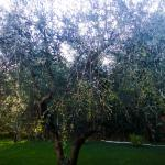Photo of Gaia Chiara Resort