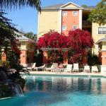 Beautiful pool and peaceful waterfall