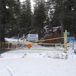 Closed Gate On Way To Ebbet's Pass At 7000 Feet
