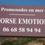 Corse emotion