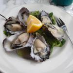 Luscious oysters!
