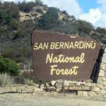 San Bernardino National Forest, San Bernardino, Ca