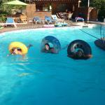 séance de natation
