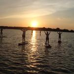 Scenic sunset paddles on Tampa Bay