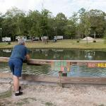 Koi and fishing pond