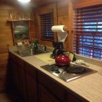 Asheville River Cabins Foto