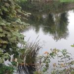 River Suir