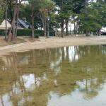 Bassin et plage