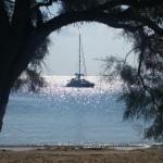 Foto di Naxos Palace Hotel