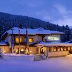 Foto di Sheraton Davos Hotel Waldhuus