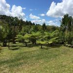 Beuatiful gardens