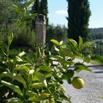 Hotel Borgo Casabianca Foto