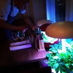 Chef & Sommelier Foto