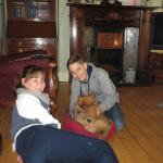 Avoca House Bed and Breakfast Foto