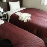 Daiichi Fuji Hotel Foto