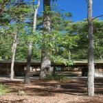 Cabin setting