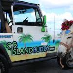 IslandBuddy