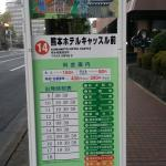 Kumamoto Hotel Castle Foto