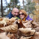 Acres and acres of walking trails/areas with many beautiful spots for some great family pics.