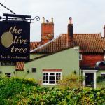 Bilde fra The Olive Tree