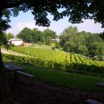 Nearby Stone Hill Winery grounds
