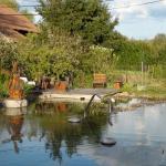 le bassin bio qui doit être top en été !!!