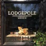 Lodgepole