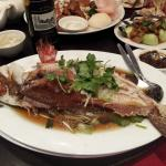 Steamed morwong fish