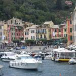 beautiful marina of portofino