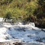 Photo of Popa Falls Camp