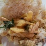 Curry, shrimp Thai rolls, pad thai noodle