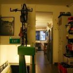 Photo de Tree In Lodge