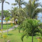 Výhled z bungalovu