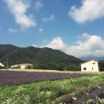 Haneui Lavender Farm