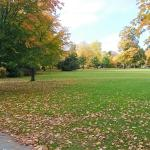 autumn at kings heath