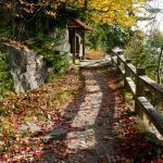 Garden path in October
