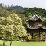 Pagoda on the spacious grounds