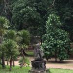 Billede af Jardim Botanico