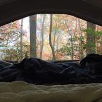 Our view out of our camper. We were literally hanging off the mountain.
