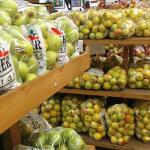 Apples at Mercier Orchards