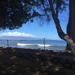 Aloha Mixed Plate Photo