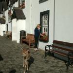 Photo de Glenmalure Lodge